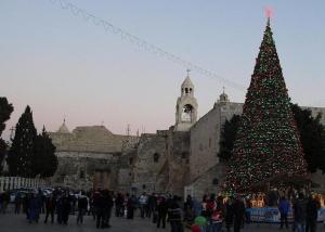 betlehem-tree-small1